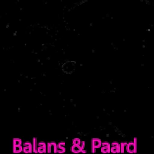 Balans en Paard